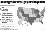 Challenges to state gay marriage bans