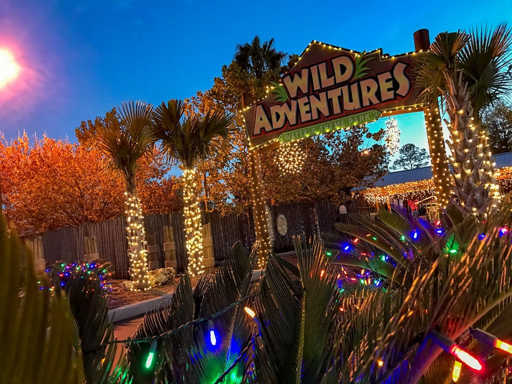 Wild Adventures Christmas Lights