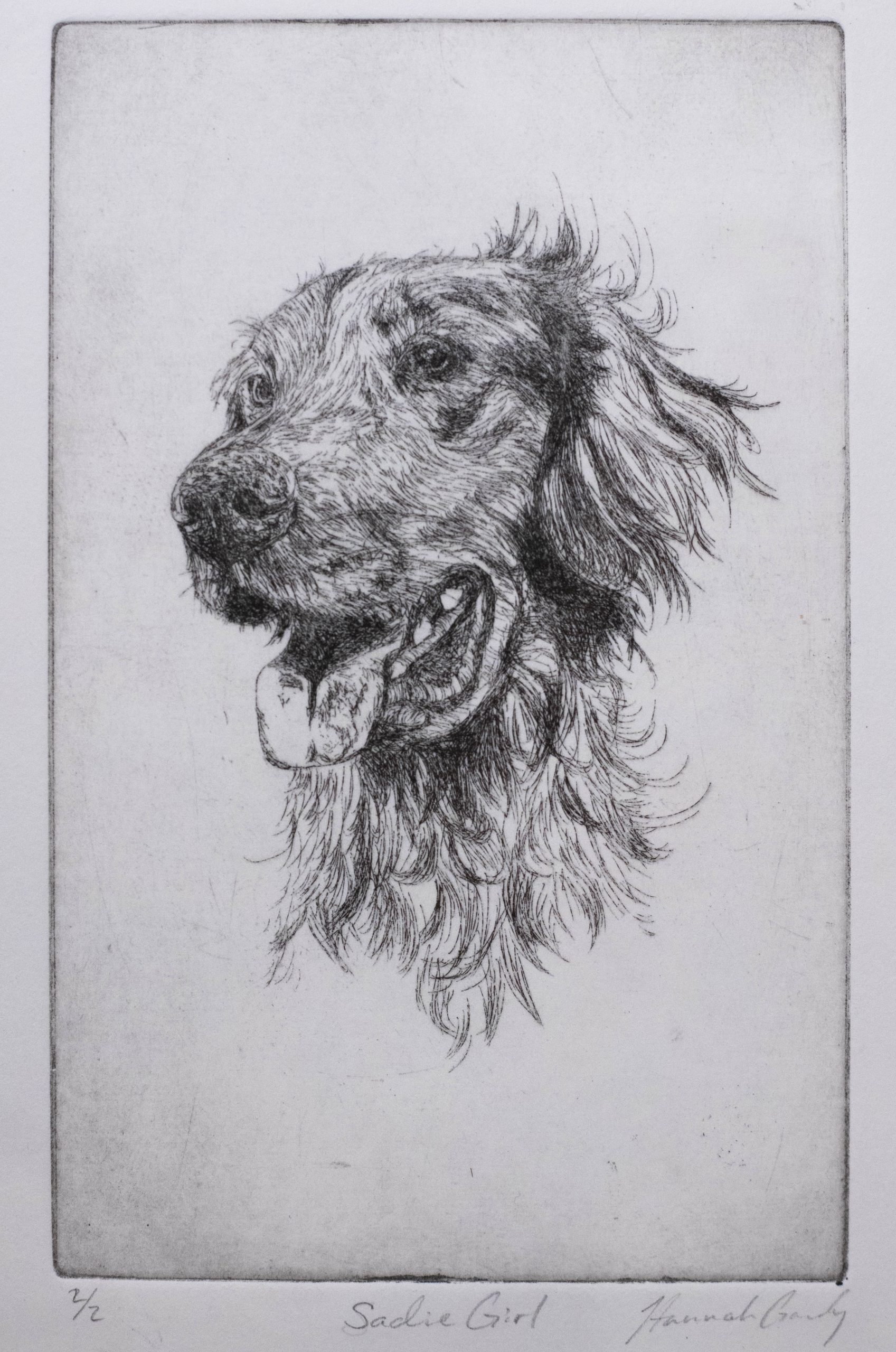 Hannah Gandy of Valdosta, Georgia Sadie Girl (Intaglio) Honorable Mention