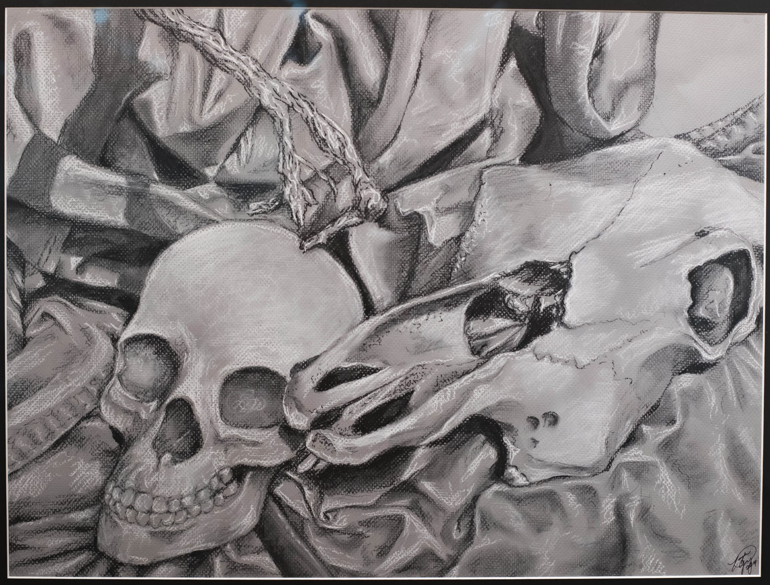 Taylor Gray of Valdosta, Georgia Greyscale Still Life (Charcoal and Conte Crayon)